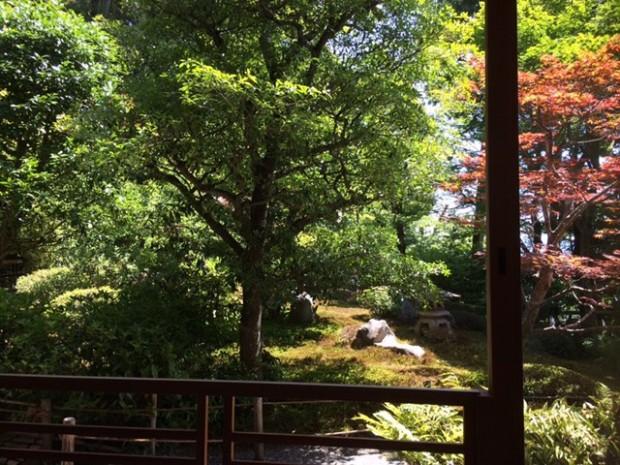 鈴虫寺 のお庭。 奇麗だった~